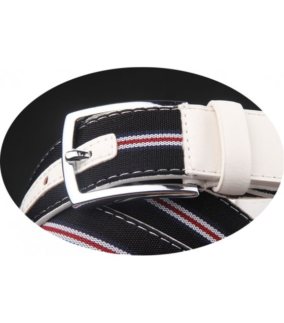 BLT172 - Canvas Striped Belt