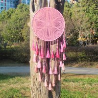 DC111 - Tassel gradient dream catcher