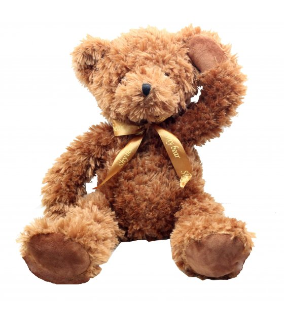 GC013 - Simple Teddy Gift Idea