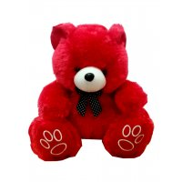 GCN009 - Cuddly Soft Teddy Bear