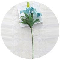 HD094 - Lilly flower Stem