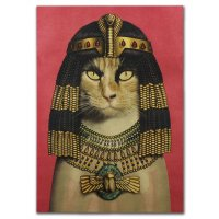 PO040 -Cleopatra cat Poster