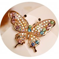 SB120 - Exquisite butterfly Brooch