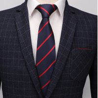 T060 - Casual Men's Tie