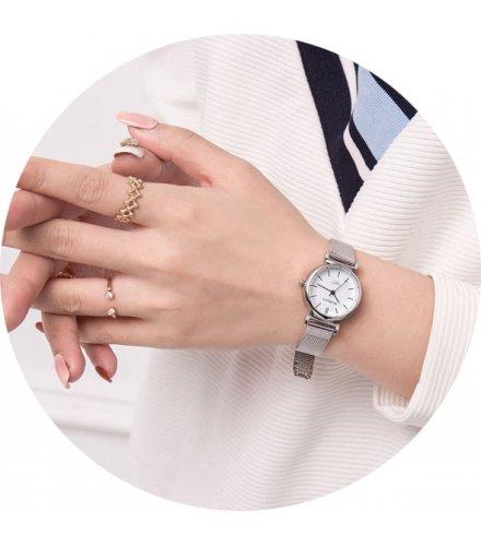W3069 - Simple Fashion Mesh Belt Silver Watch